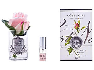 Роза Cote Noire Rose Bud Cherry Blossom Pink арт. GMR43